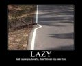 lazy - chattycandy photo