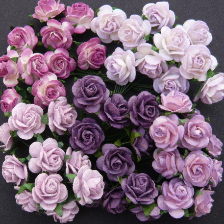 pink and purple roses - FRIENDSHIP