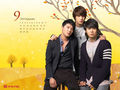 ♥♥JYJ♥♥ - jyj wallpaper