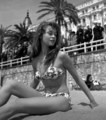 BB - brigitte-bardot photo