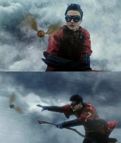 HP GIFS AND STILLS