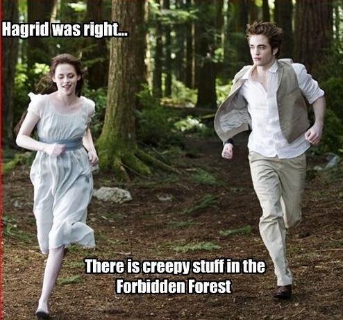 Hagrid was right...