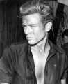 James Dean - james-dean photo