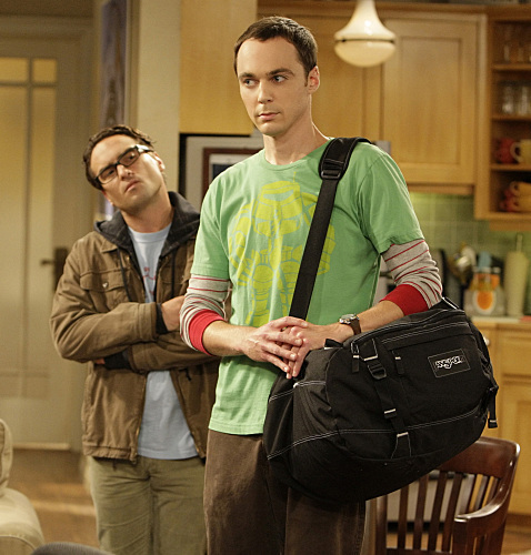 Image result for sheldon and leonard