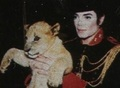 MJ and baby lion - michael-jackson photo