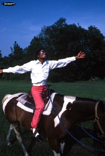Michael Jackson - Horse