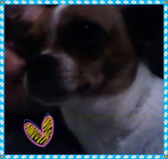 My baby :P