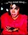 My sweet king... - michael-jackson photo