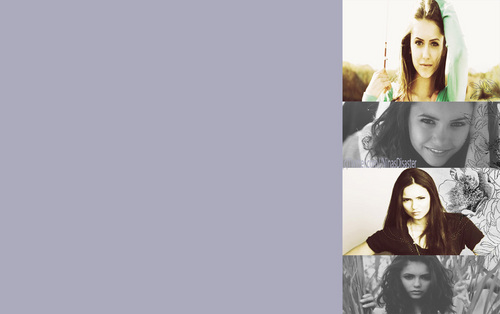 Nina Dobrev fond d'écran called Nina Dobrev Gackground (for Twitter)