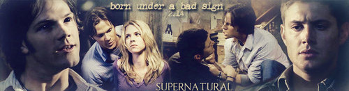 Season 2 banners