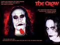 The Crow - brandon-lee wallpaper