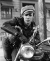 The Wild One - classic-movies photo