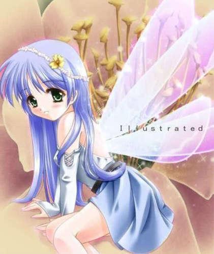 fairy 画像