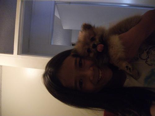my anjing, anak anjing