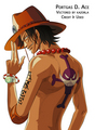 Ace - one-piece photo