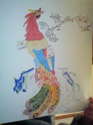 An Asian Phoenix (no its NOT a rooster..my dad thought it was a rooster >_<)