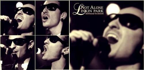 "Chester ""Not Alone"""