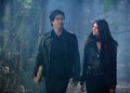 Fool Me Once - elana-and-damon screencap