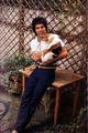 Freddie's Cats