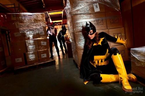 Harley , Catwoman & Batgirl