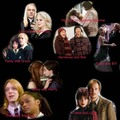 Harry Potter Canon Couples