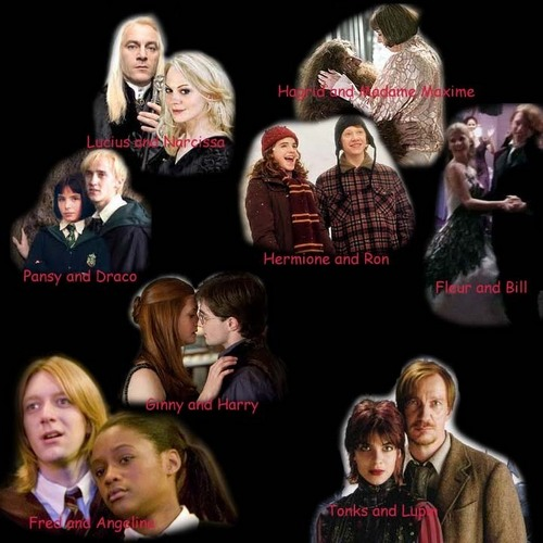 Harry Potter kertas dinding entitled Harry Potter Canon Couples