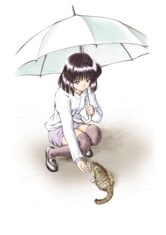 Sailor Saturn वॉलपेपर probably with a parasol titled Hotaru