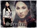 PLL - Spencer