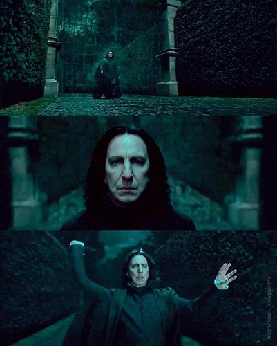 Severus Snape wallpaper possibly with a guillotine entitled Severus Snape Deathly Hallows