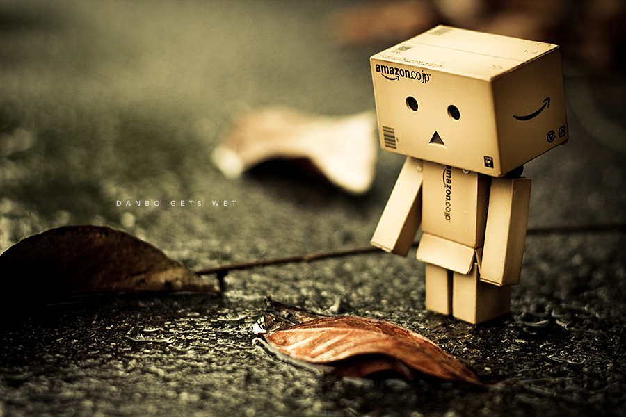 danbo images so cute hd wallpaper and background photos