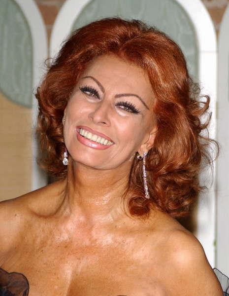 Sophia Loren Images Sophia Loren Wallpaper And Background