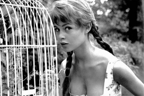 Brigitte Bardot karatasi la kupamba ukuta entitled Sweet BB