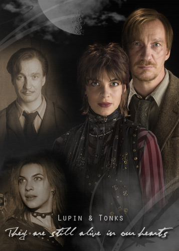 Harry Potter wallpaper with a business suit called Tonks and Lupin