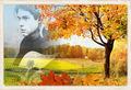 Wonderful autumn for Athena ...