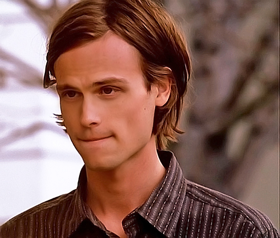 dr-spencer-reid-dr-spencer-reid-16417718-904-768.jpg