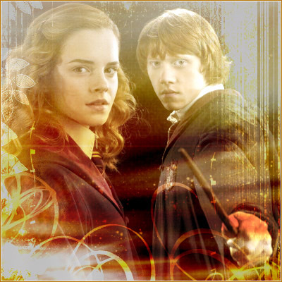 ron & hermione collection