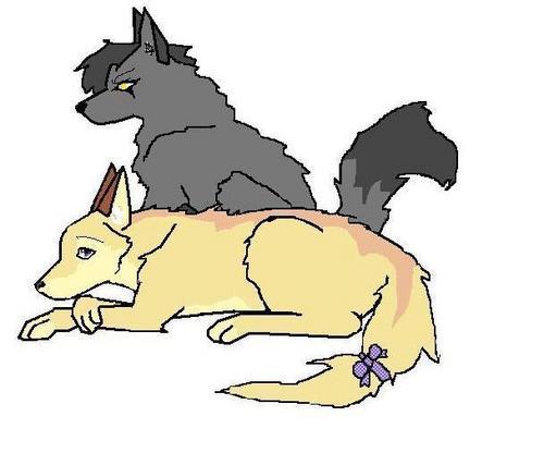 bro & sis wolves