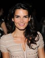 Angie @ 2010 TEN Upfront - angie-harmon photo