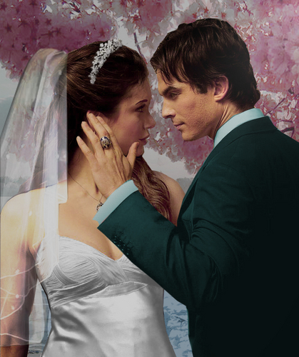 Damon & Elena wallpaper entitled Damon/Elena ღ