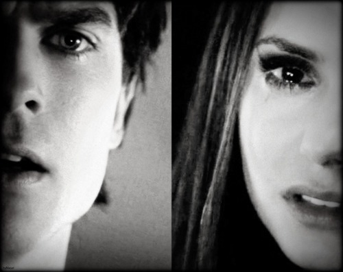 Damon & Elena wallpaper entitled Delena