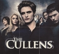 Eclipse Trading Cards Series 2 - esme-and-carlisle-cullen photo