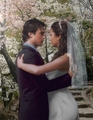 Elena and Damon's wedding