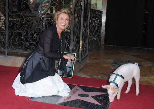 Emma Thompson wallpaper possibly with a bullterrier called Emma Thompson Gets a Star on the Walk of Fame