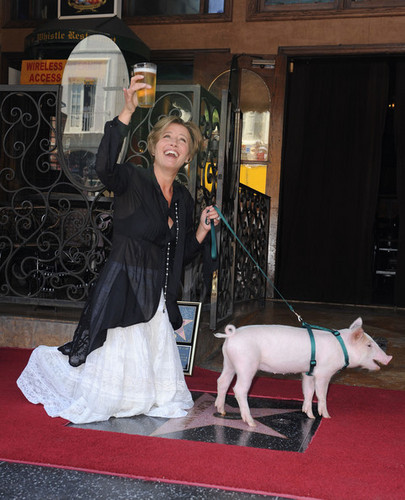 Emma Thompson wallpaper possibly with a bullterrier, a lippizan, and a rat terrier called Emma Thompson Gets a Star on the Walk of Fame