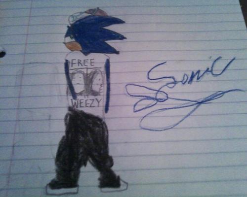 Gangsta Sonic