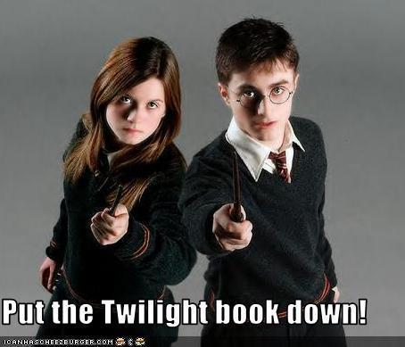 Harry Potter vs Twilight - haleydewit Fan Art