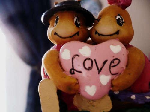 Amore ♥