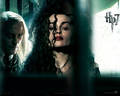 helena-bonham-carter - Offical DH Walpaper wallpaper