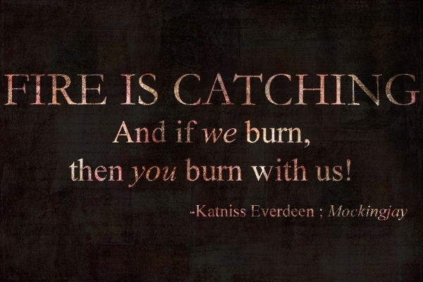 Quotes From The Hunger Games. QuotesGram
