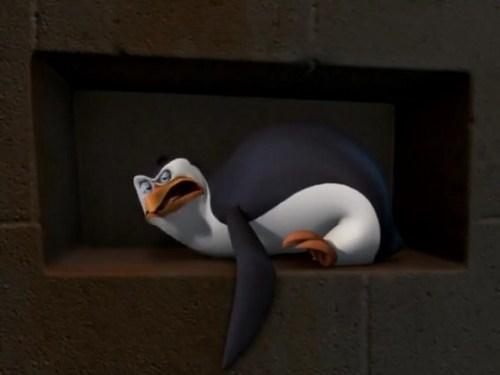 Rico The penguin